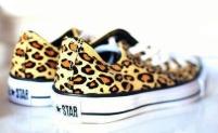 Converse wild